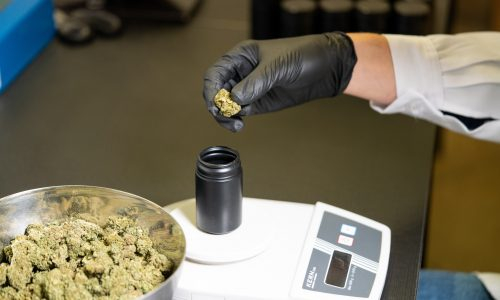 Legislature's executive board poured cool water on constituents' hopes that medical marijuana will available next month.